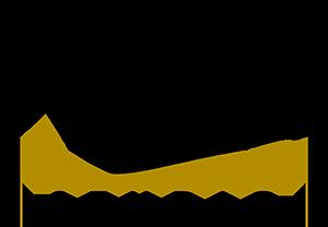 Logo RCaine Studio